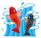「いらかの波と雲の波」鯉のぼりの歌詞と意味!子どもと歌おう