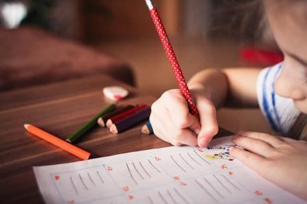 夏休み自由研究!1年生・2年生におすすめの簡単な観察とまとめ方