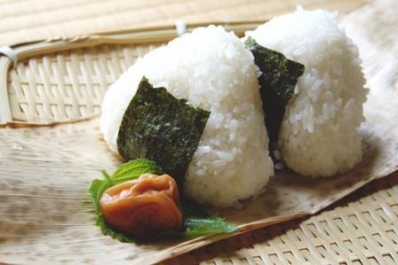 【夏のお弁当】食中毒を予防する食べ物!その食材は気休めかも?