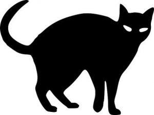 黒猫 (2)